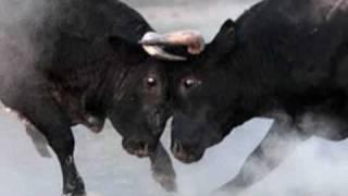 El Toro y la Luna (La luna y el toro)