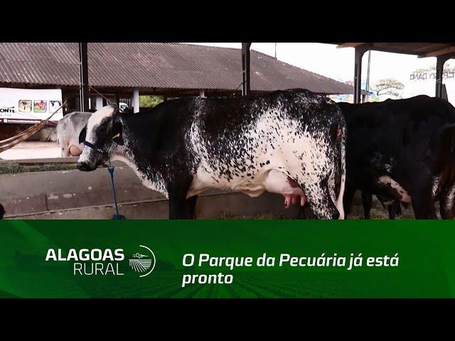 O Parque da Pecuária já está pronto para receber mais uma Expoagro Alagoas