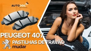 Manutenção Peugeot 407 SW - guia vídeo