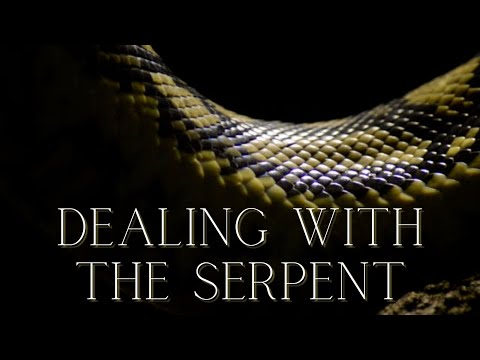 Dealing with the serpent – Pastor Nathaniel Urshan