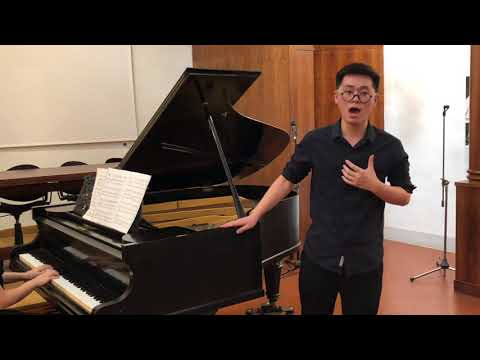 Opera Network Firenze - About us: Zhong Dingjun Andrea