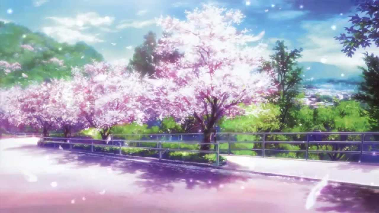 Falling Cherry Blossom Wallpaper Hd Cherry Blossoms Animated Wallpaper Http Www