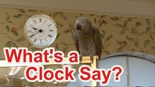 Einstein? What does a clock say?
