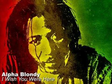 Wish you were here alpha blondy