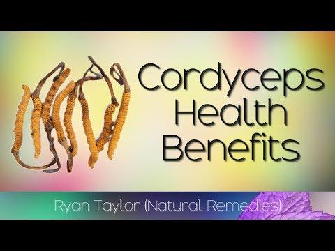 cordyceps:-benefits-for-health