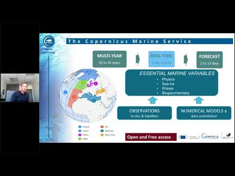From observation to information the Copernicus Marine Servic