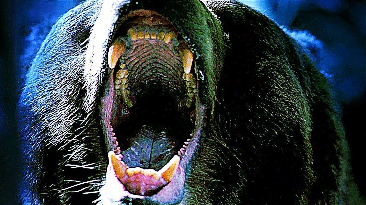 Grizzly Géant Film HD en Français