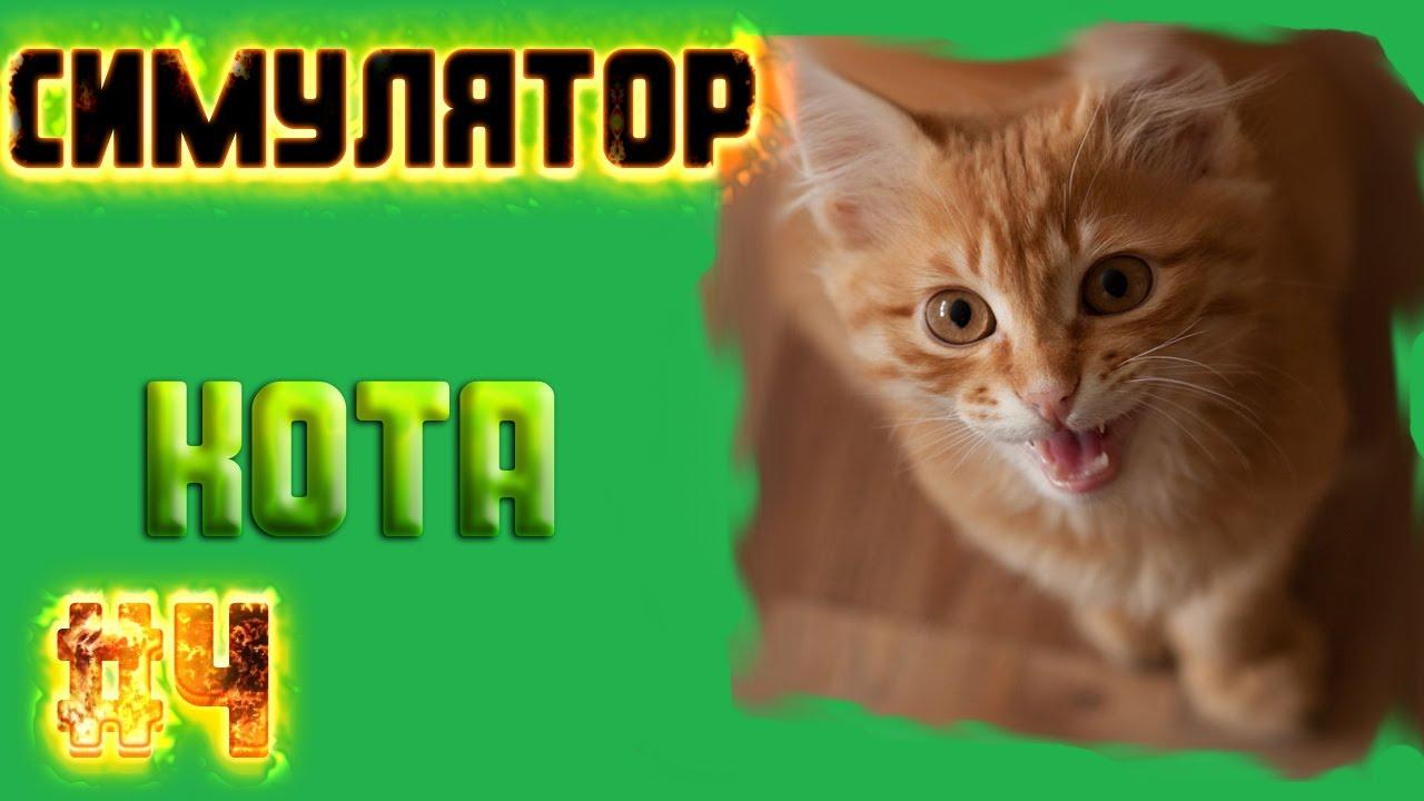 Скачать игру для кошки на компьютере