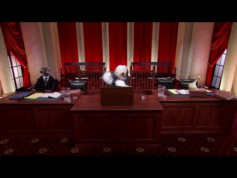 Armour v. City of Indianapolis: Oral Argument - February 29, 2012