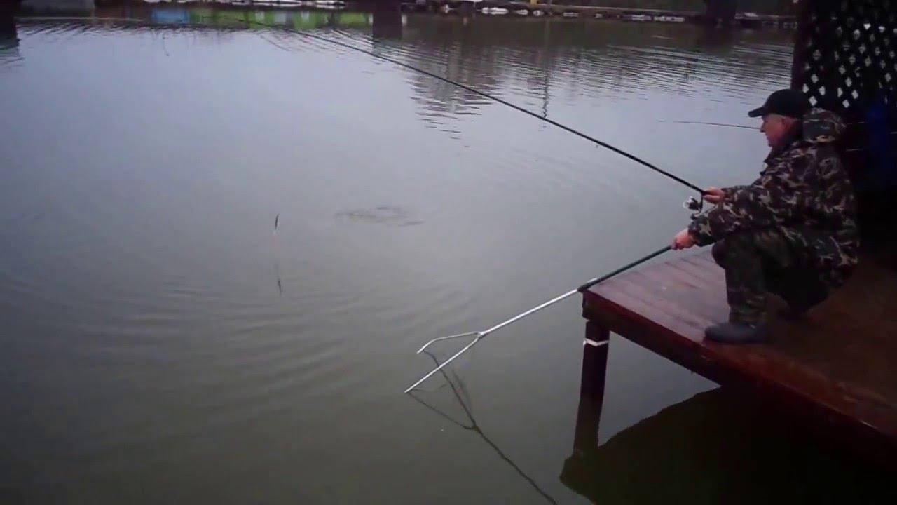 прогноз на клев рыбы в виннице