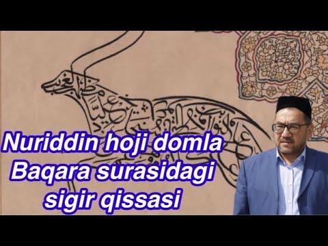 Nuriddin Hoji Domla-Baqara Surasidagi Sigir Qissasi/Нуриддин хожи домла-Сигир киссаси