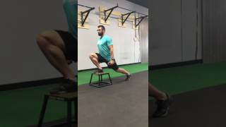 Front Foot Elevated Split Lunge