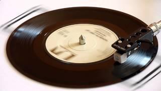 Don McLean   American Pie Parts 1 & 2   Vinyl Play