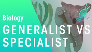 Ecology: Generalists vs Specialists | Biology for All | FuseSchool