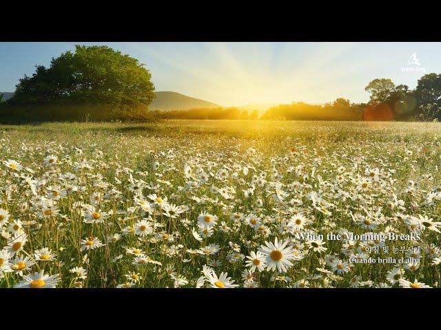〖NEW SONG〗When the Morning Breaks 아침 빛 눈부시게 ▷ 하나님의교회 세계복음선교협회