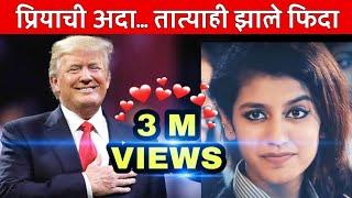 Trump Tatya | Donald Trump's reaction on Priya Prakash Video | Priya Prakash Varrier | MVF