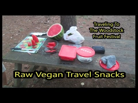 Raw Vegan Travel Snacks - Traveling To The Woodstock Fruit F