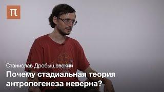 Классификация гоминид - Станислав Дробышевский