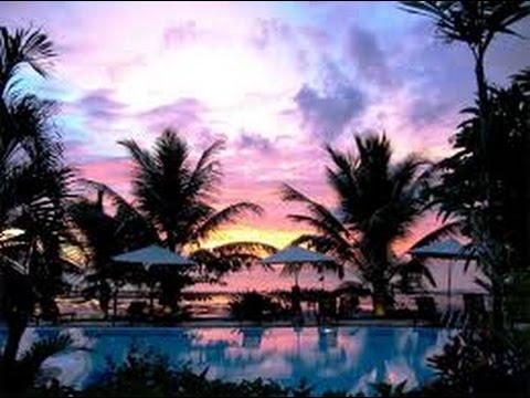Relaxing Music Sleep, Javanese Gamelan, singing bird and Coconut tree background, Indonesia