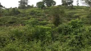 kadambur hills