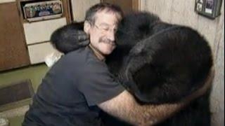 Robin Williams meets/touches Koko, a Silverback Gorilla - SF Zoo