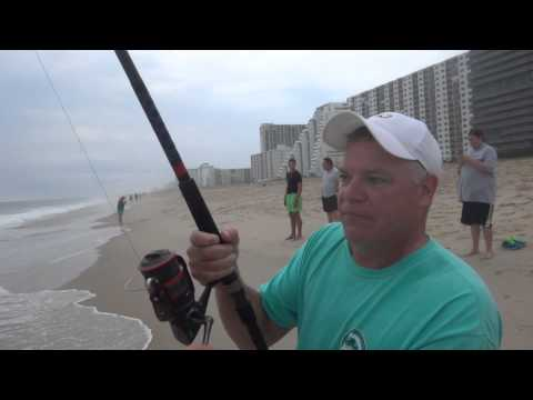 Shark Fishing In The Surf In Ocean City Maryland