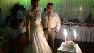 свадебный торт северодвинск