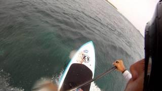 Wave session SUP Maldives HD