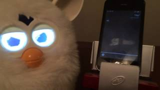 Furby Gets Insulted by Siri