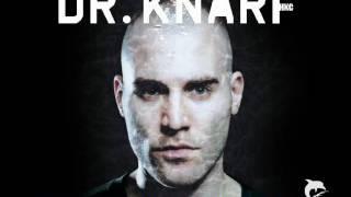 Dr. Knarf-Flieg oder Fall