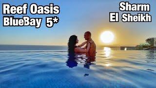 ЛУЧШИЙ РИФ В БЕЗВЕТРЕННОЙ БУХТЕ Обзор отеля Reef Oasis Blue Bay 5 Египет в Феврале Шарм эль Шейх