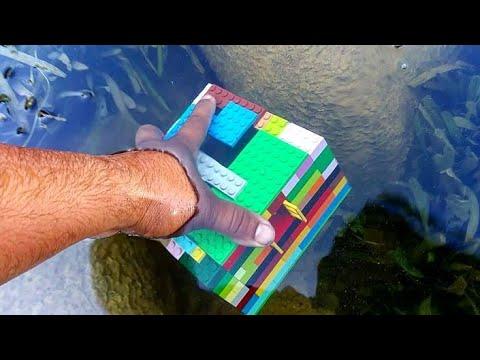 LEGO DIY Fish Trap!