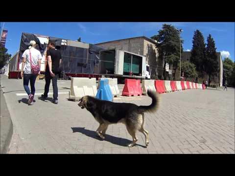 Албания, Тирана. 04.05.2017