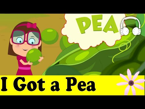 I Got a Pea (Funny Song) | Family Sing Along - Muffin Songs