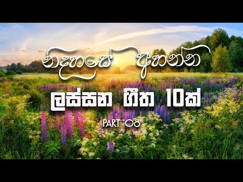 Beautiful 10 Sinhala Classic Songs - Old Songs - TOP 10 || Jukebox || Part 08 || MUSIC HUB SL ||