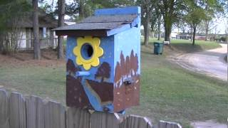 Bamas Birdhouses 3.mpg