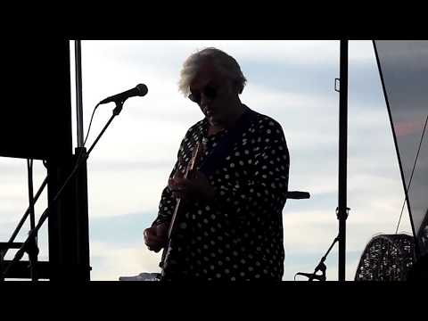 Robyn Hitchcock 6/28/17 Waterfront Wednesday, Louisville, KY