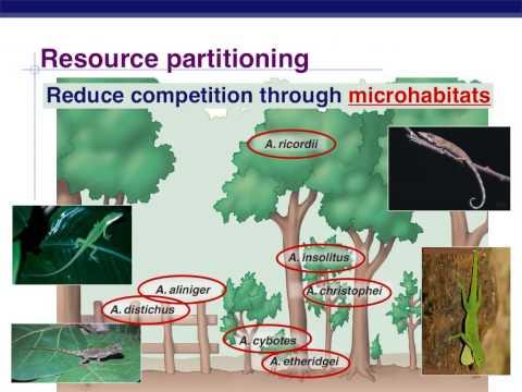 2. Community Ecology