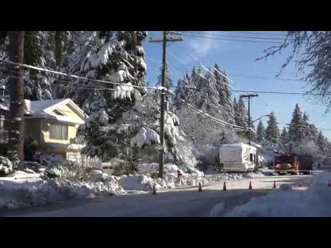 BC Winter Snow Storm Branches on Power Lines. Kitchener Ave, Port Coquitlam (4K)