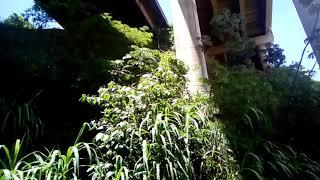 Troller na ferrovia abandonada na Alta Paulista