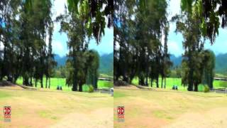 3D Video Hawaii Nature Scene - 3D Video Everyday N°127