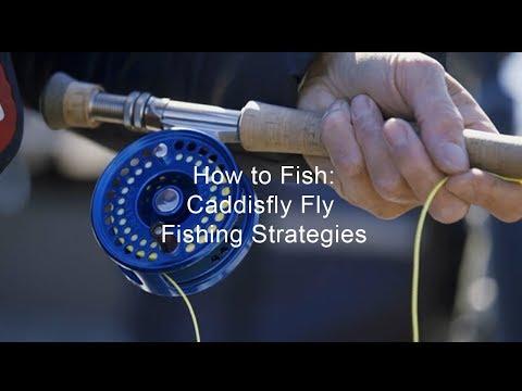 How To Fish: Caddisfly Fly Fishing Strategies | GoFishBC