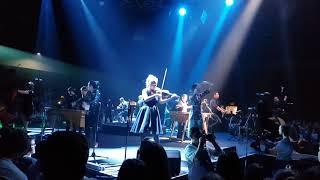 Baixar Koolulam King David Marimba band South Africa  [4K]