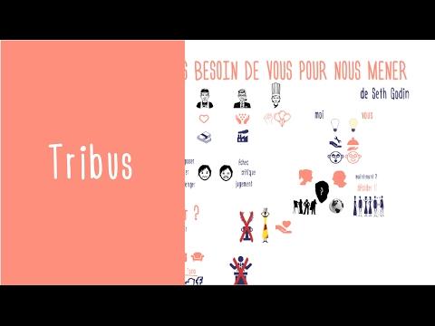 Affirmer son leadership : Tribus de Seth Godin