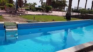 Египет 2019 Территория отеля Джоли Вили Гольф JOLIE VILLE GOLF RESORT 5 Часть 1