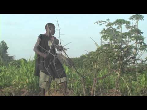 WorkSong: Part 1 The Musical Farmers of Sukumaland, Tanzania