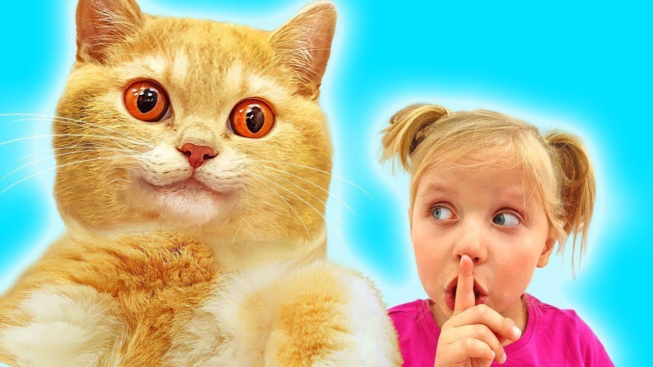 Алиса и веселые истории про котика