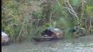 Sundarban- The Beautiful Forest of Bangladesh