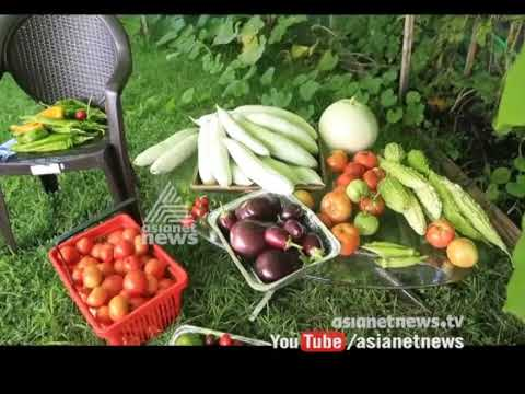 Organic farming in American malayalees home | America Ee Azhcha 28 Aug 2017