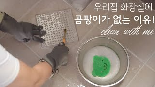 욕실청소/욕실 곰팡이/욕실 깨끗하게 유지하는 법/욕실 …